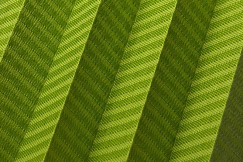 Plissee Grün Awangarda-28 Maßanfertigung